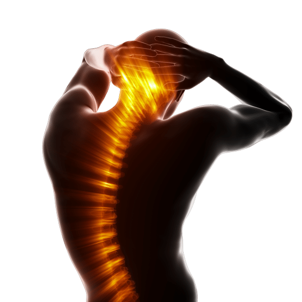 chiropractic care back spine